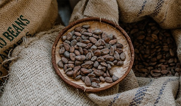 Más información sobre los chocolates Kaitxo
